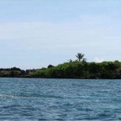 Crocodile Island User Photo
