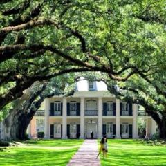 Oak Alley Plantation User Photo