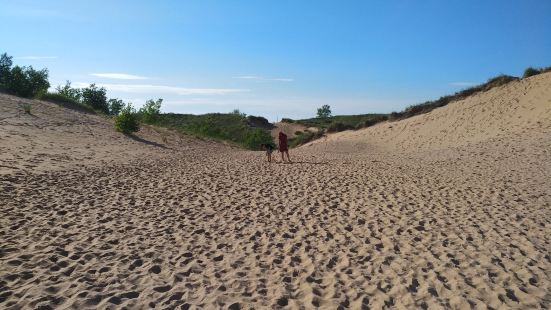 Green Point Dunes Nature Preserve