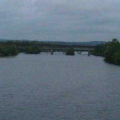Congress Avenue Bridge用戶圖片