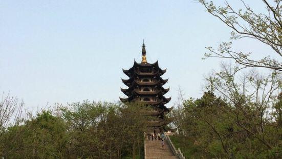 Hongyang Park