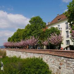 ハンガリー国立美術館のユーザー投稿写真