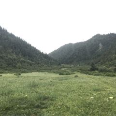 Maixiu National Forest Park User Photo