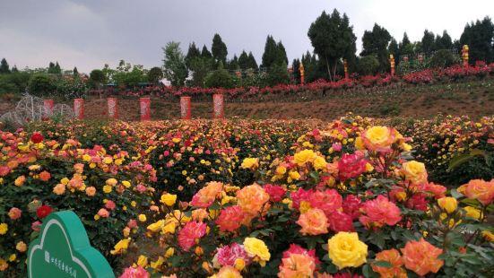 東林牧歌世界月季博覽園