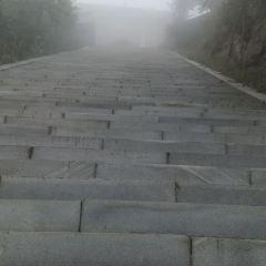 大雲山國家森林公園用戶圖片