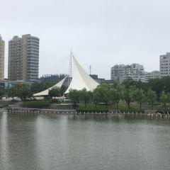 市民文化廣場用戶圖片