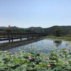 Big Stone Yaguang Lake National Wetland Park User Photo