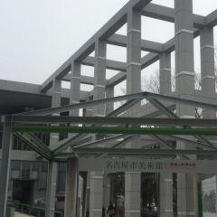 Nagoya City Art Museum User Photo