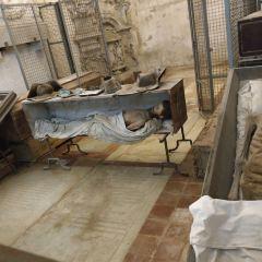 卡普奇尼地下墓穴用戶圖片