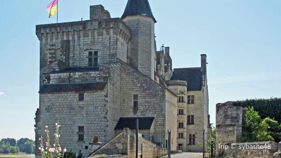 ChâteaudeMontsoreau-當代藝術博物館