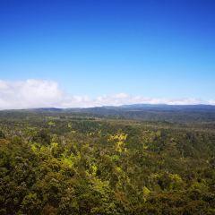 Koke'e State Park User Photo