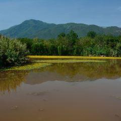 Menglishuixiang Wetland Park 여행 사진