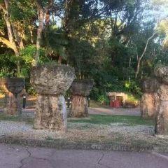 拉提石公園用戶圖片