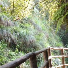 황상 지질공원 여행 사진