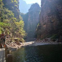 Lianhuapen User Photo