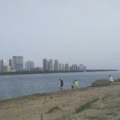 Sunny Sand Beach User Photo