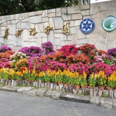 Chinese Academy of Sciences Huanan Botanical Garden User Photo