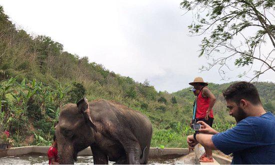 Chiangmai Mountain Sanctuary