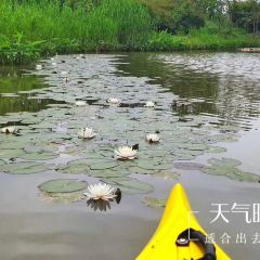 Guangming Ecological Park User Photo