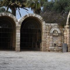 Eretz Israel Museum User Photo