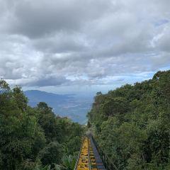 바나힐 여행 사진