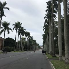 Taiwan University User Photo