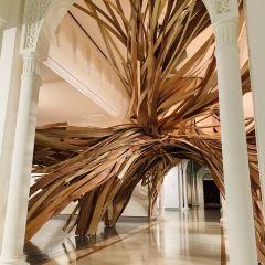 Sharjah Art Museum User Photo