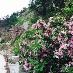 톈먼산 당왕성 여행 사진