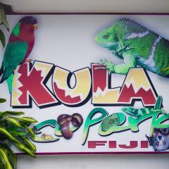 庫拉植物園用戶圖片