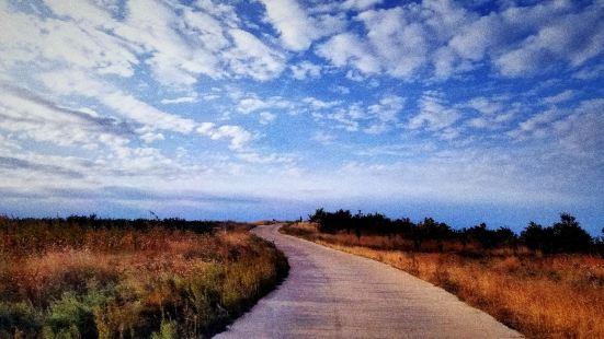 这里是大连市驼山乡国家海滨公园,漫长崎岖的海岸线风光秀美,大