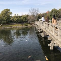 Shirotori Garden User Photo