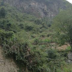 壩王嶺用戶圖片