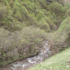 石門雪山用戶圖片