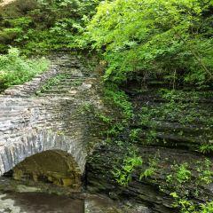 Niagara Gorge Trail用戶圖片