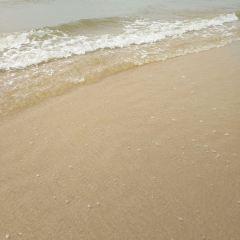 Butterfly Island Paradise Beach User Photo