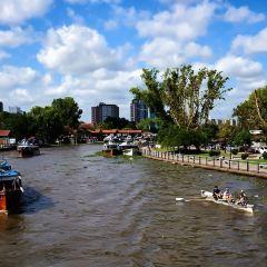 Tigre Delta User Photo