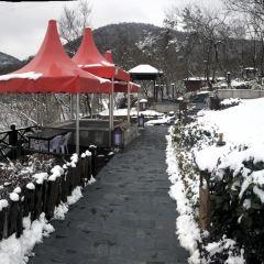 湯山溫泉房車營地露天茶園溫泉用戶圖片