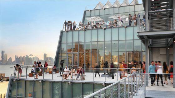 Whitney Museum Ticket