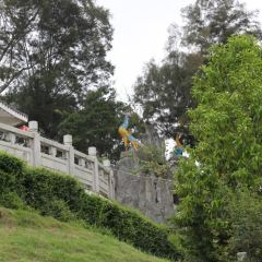 Fenghuang Mountain Park User Photo