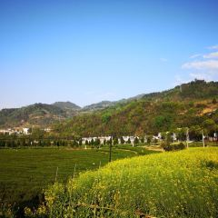 龍頭村用戶圖片