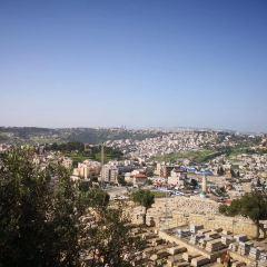 神殿の丘のユーザー投稿写真