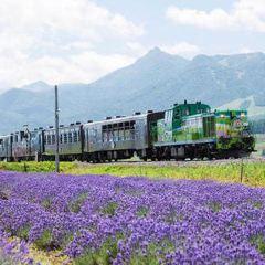 Rokugo no Mori User Photo