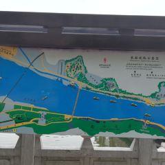 奉先寺碼頭用戶圖片