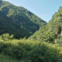 Guan Mountain Forest Park User Photo