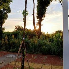 Liangcun Tower User Photo