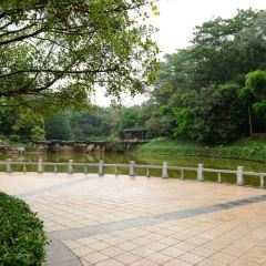 Liuhua Park User Photo