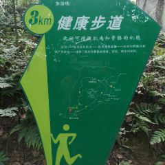 Cuiping Mountain Park User Photo