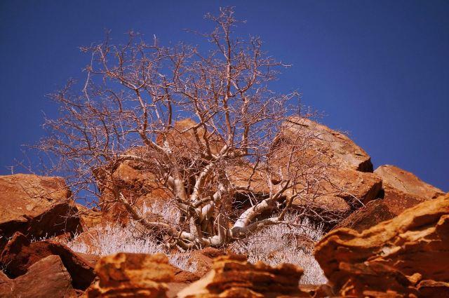Twyfelfontein