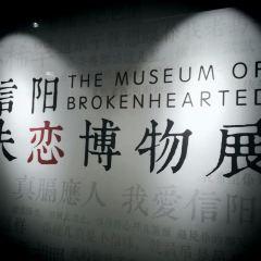 信陽失戀博物館用戶圖片