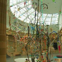 國立當代藝術博物館用戶圖片